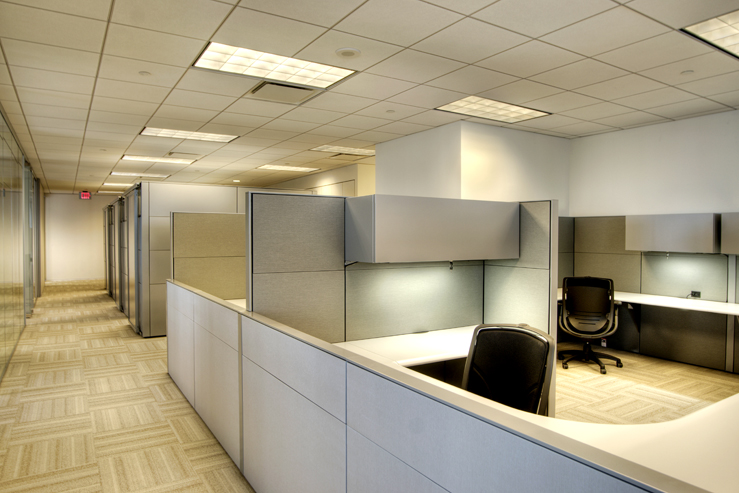 Corporate Interior Design Houston Avison Young Open Work Area Cubicles