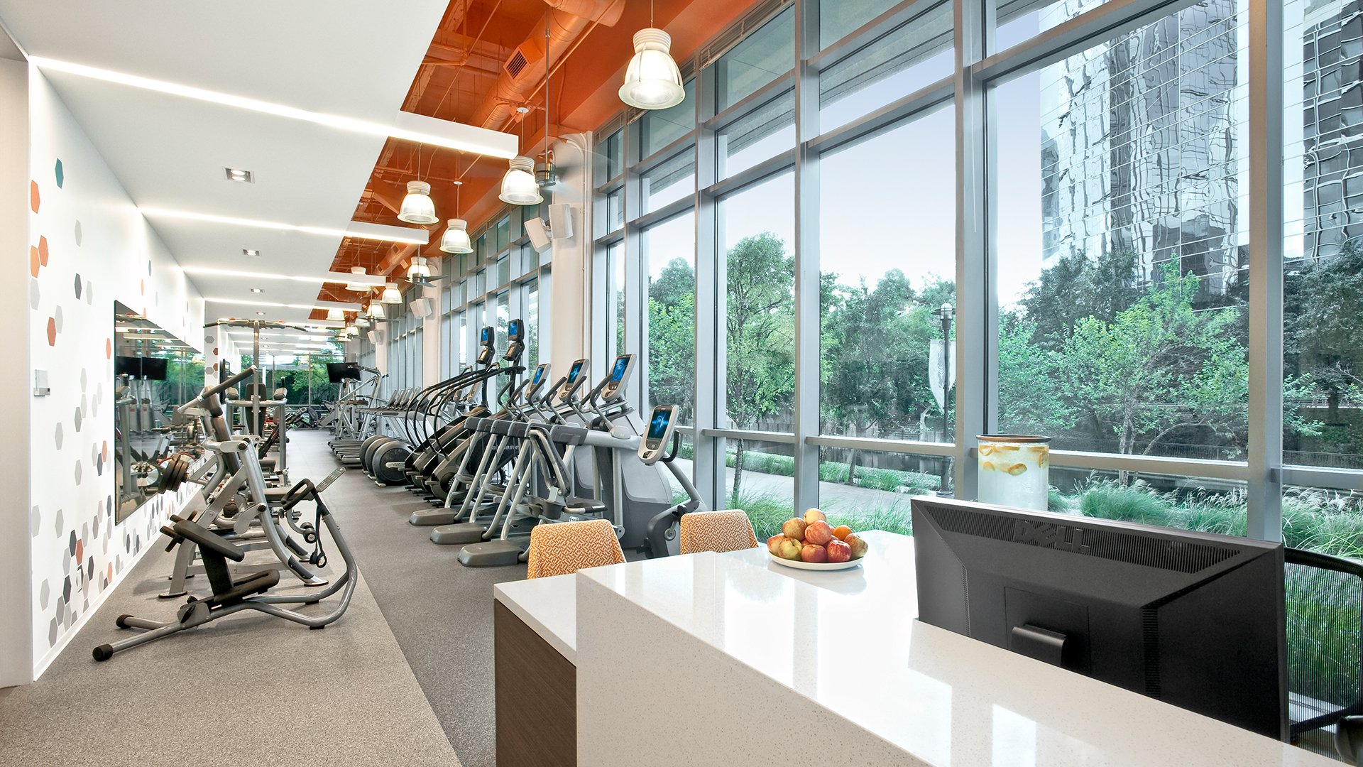 Corporate Interior Design Fitness Center Newfield Fitness Center Cardio Machines Natural Light Floor to Ceiling Windows