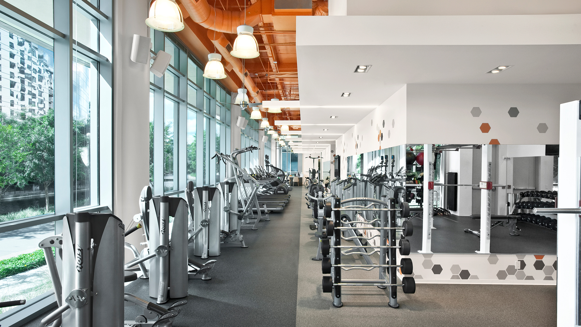 Corporate Interior Design Fitness Center Newfield Fitness Center Workout Area Natural Light
